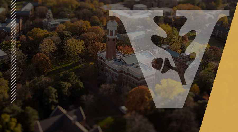 <span>Brand Engagement and Governance</span>: creates, protects, and promotes Vanderbilt's brand through strategic partnerships, products and services.