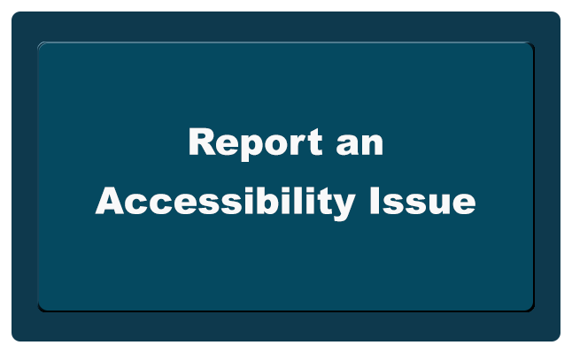 Accessibility Issue button