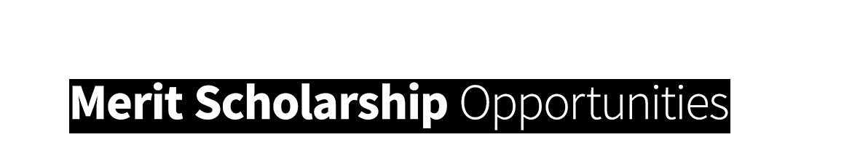 Application for merit scholarships scholarships vanderbilt scholarships thecheapjerseys Gallery