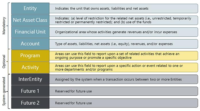 SkyVU Chart of Accounts and Organizational Structure   SkyVU