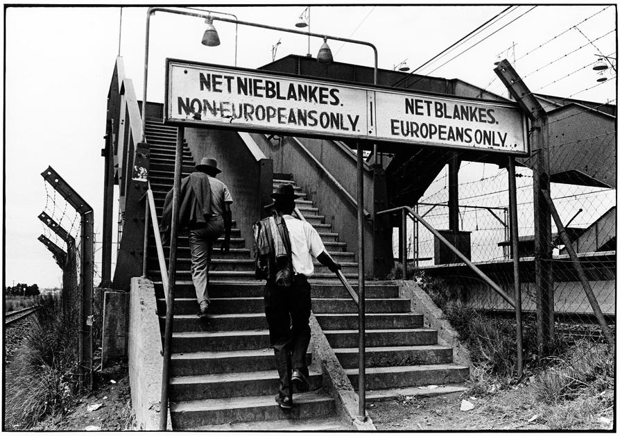 essays on residential segregation Strides towards racial equality define american society yet, racial residential segregation remains an issue today despite efforts to remove this expression of racial inequality racial.