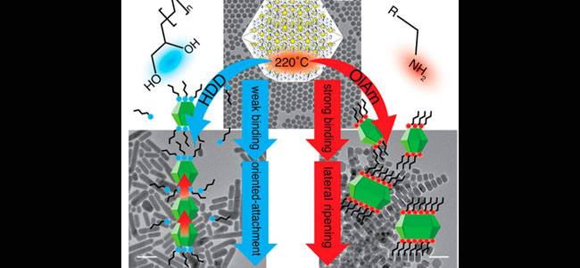 Chemistry of Materials: Controlled Surface Chemistry for the Directed Attachment of Copper(I) Sulfide Nanocrystals