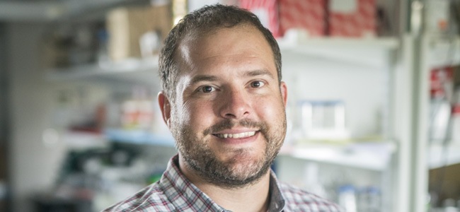 Craig Duvall has been named a recipient of the Presidential Early Career Award for Scientists and Engineers (PECASE) in a recent White House press release.