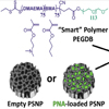 Advanced Materials: Porous Silicon and Polymer Nanocomposites for Delivery of Peptide Nucleic Acids as Anti-MicroRNA Therapies