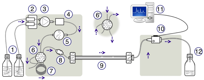 CHEM 3135W: Forensic Analytical Chemistry | Blended & Online